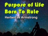 Listen to Purpose of Life - Born To Rule