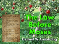 Listen to The Law Before Moses