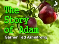 Listen to The Story of Adam