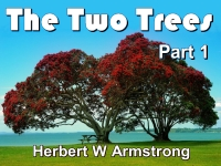 Listen to The Two Trees - Part 1