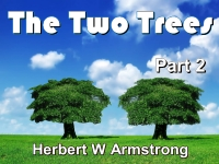Listen to The Two Trees - Part 2