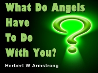Listen to What Do Angels Have To Do With You?
