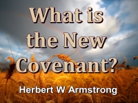 Listen to What is the New Covenant?