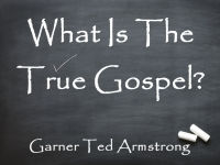 Listen to What Is The True Gospel?