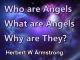Who are Angels, What are Angels, Why are They?