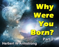 Listen to Why Were You Born? Part 3