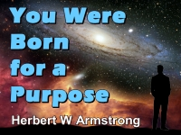 Listen to You Were Born for a Purpose