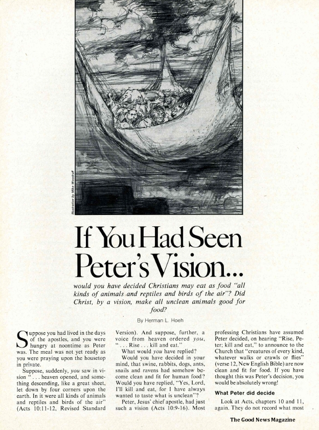 If You Had Seen Peter's Vision...