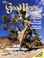 Earth's Oldest Living Things - What They Teach Us Good News Magazine January 1982 Volume: Vol XXIX, No. 1 Issue: ISSN 0432-0816