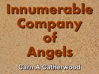 Listen to  Innumerable Company of Angels