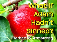 Listen to  What If Adam Hadn't Sinned?