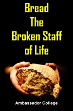 Bread The Broken Staff of Life
