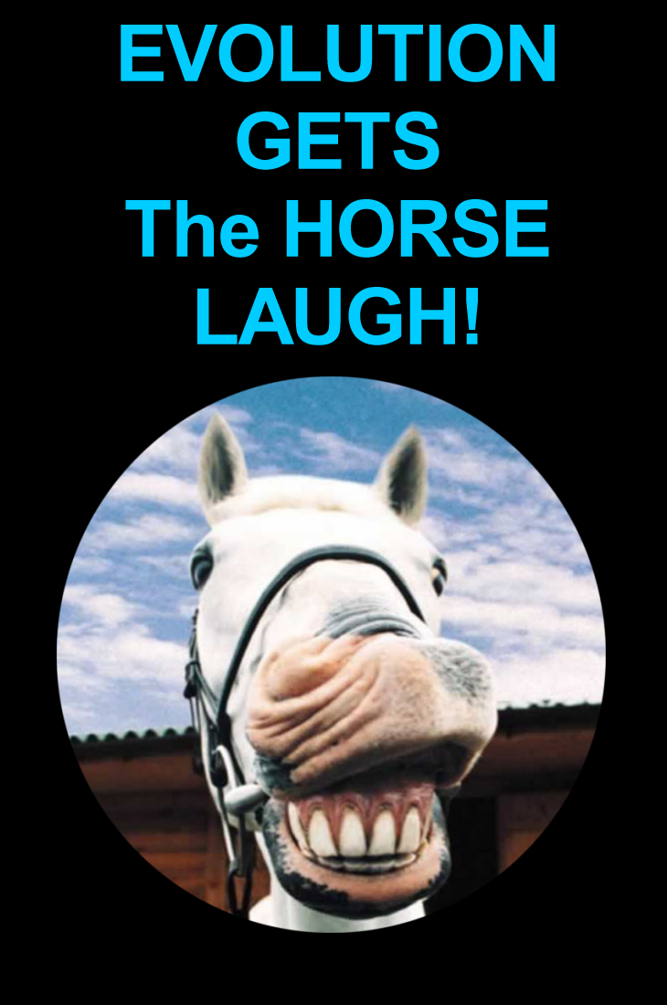EVOLUTION GETS The HORSE LAUGH!