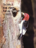 The Fable of: The First Fatal Flight