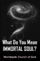 What Do You Mean... IMMORTAL SOUL?