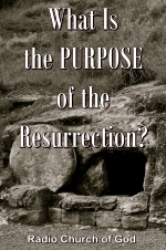 What Is the PURPOSE of the Resurrection?