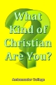 What Kind of Christian Are You?