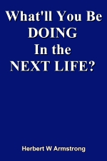 What'll You Be DOING In the NEXT LIFE?