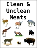 Bible Food In The Considered What Is Unclean