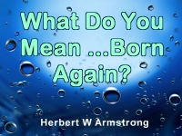 Watch  What Do You Mean - Born Again?