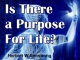 Is There a Purpose For Life?