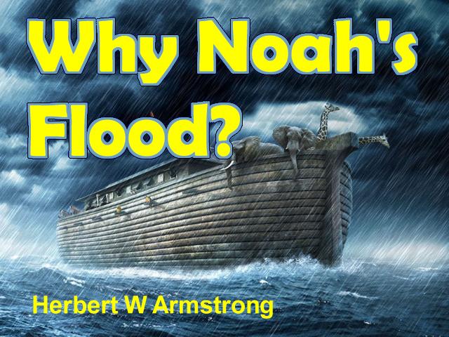 Why Noah's Flood?