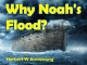 Why Noah's Flood?
