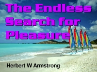 Watch  The Endless Search for Pleasure