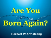 Watch  Are You Born Again?