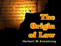 Watch  The Origin of Law